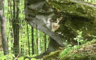 Wzgórze Kamień - pomnik przyrody nieożywionej, fot. K. Kowlaczuk (10)