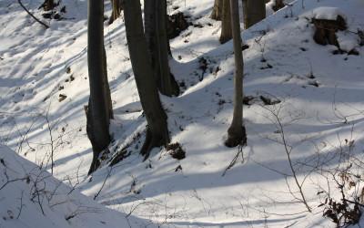 Zima w Krasnobrodzkim Parku Krajobrazowym, fot. K. Kowalczuk (1)