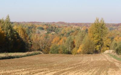 Jesień w Szczebrzeszyńskim Parku Krajobrazowym, fot. K. Kowlaczuk (12)