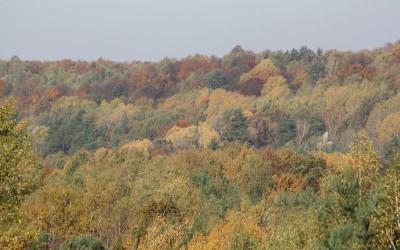 Jesień w Szczebrzeszyńskim Parku Krajobrazowym, fot. K. Kowlaczuk (14)