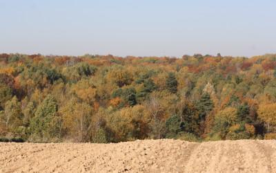 Jesień w Szczebrzeszyńskim Parku Krajobrazowym, fot. K. Kowlaczuk (16)