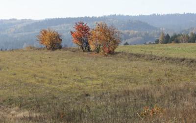 Jesień w Południoworoztoczańskim, fot. K. Kowalczuk (4)