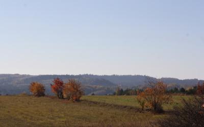 Jesień w Południoworoztoczańskim, fot. K. Kowalczuk (6)