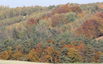 Jesień w Południoworoztoczańskim, fot. K. Kowalczuk (7)