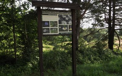 Odnowiona tablica na ścieżce Szczebrzeszyn - Kawęczynek
