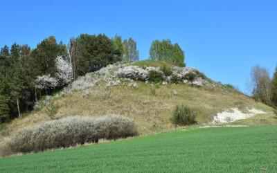 Obszar Natura 2000 Horodysko