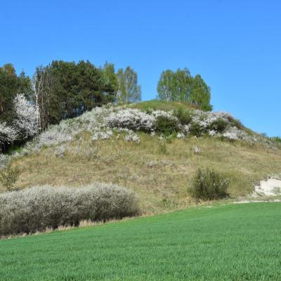 W trosce o obszar Natura 2000 Horodysko