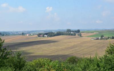 Widok na Kolonię Łaziska