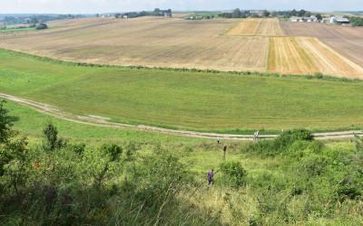 Widok na pola wsi Iłowiec