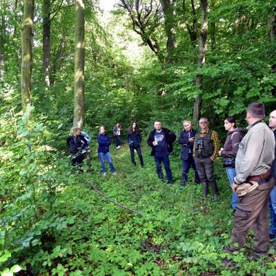 Spotkanie Zespołu Lokalnej Współpracy w Lesie Orłowskim