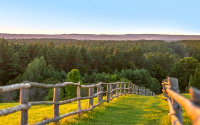 """1 miejsce Dariusz Nicgorski, """"Roztoczański Park Narodowy – widok z Białej Góry"""" (Roztoczański Park Narodowy - RPN)"""