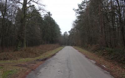 Fot.2. Tu nadchodzi czas iść na piechotę w las
