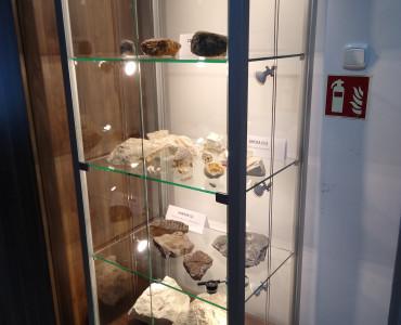 Gablota ze zbiorami skamieniałości